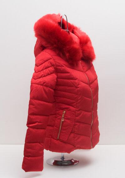 Червено яке с пух 4